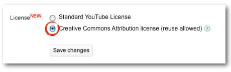 Standard YouTube license and